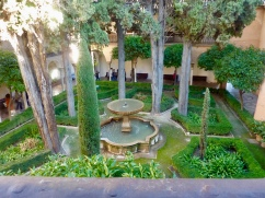 Alhambra_cypress