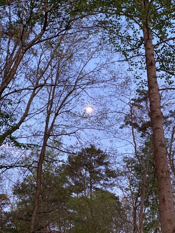 moon 5 April 2020